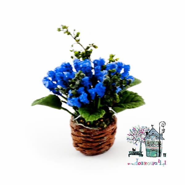 Kwiatek W Doniczce